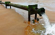 Water Saving Week