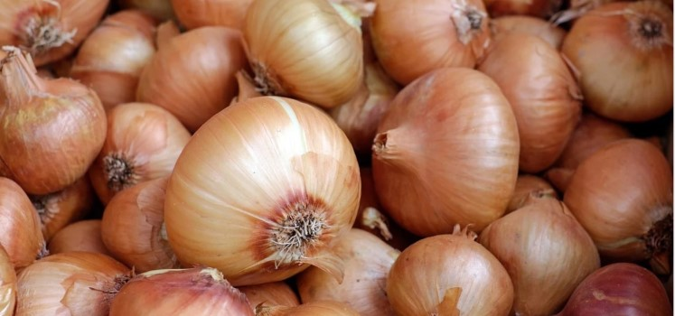 lots and lots of onions