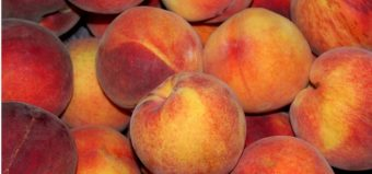 Lots of peaches in a pile