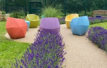 Using green spaces for mental health recovery